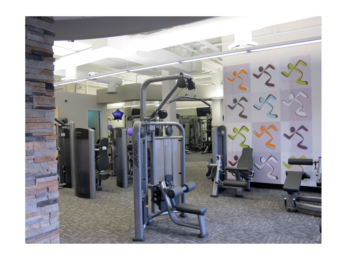 anytime fitness business plan Looking for a great internship at anytime fitness in framingham, ma learn more about the fitness business management position right now.